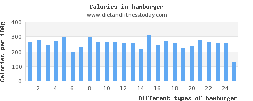 hamburger iron per 100g