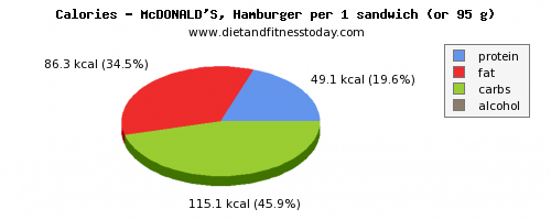 saturated fat, calories and nutritional content in hamburger