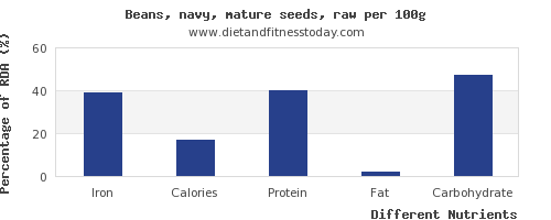 chart to show highest iron in navy beans per 100g
