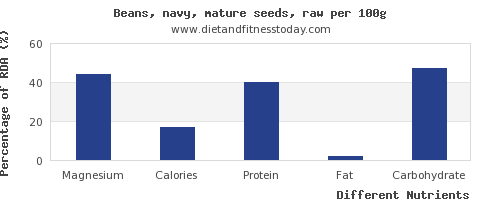 chart to show highest magnesium in navy beans per 100g