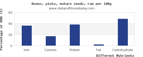 chart to show highest iron in pinto beans per 100g