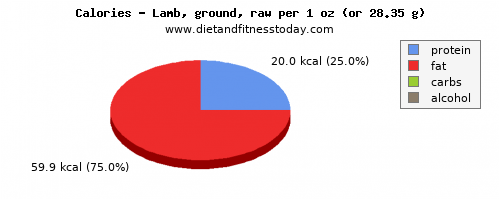 saturated fat, calories and nutritional content in lamb