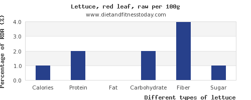 nutritional value and nutrition facts in lettuce per 100g