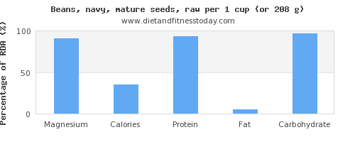 magnesium and nutritional content in navy beans