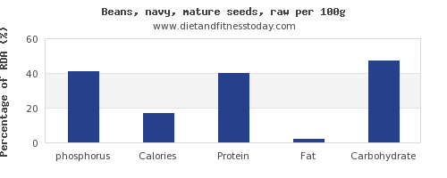 phosphorus and nutrition facts in navy beans per 100g