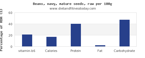 vitamin b6 and nutrition facts in navy beans per 100g