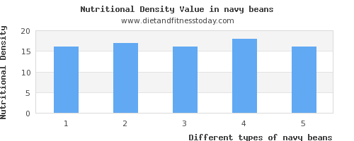 navy beans polyunsaturated fat per 100g