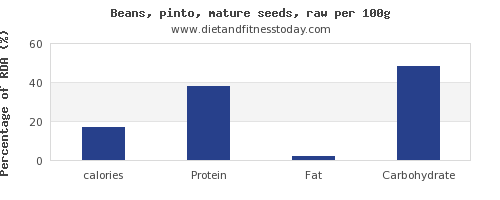 calories and nutrition facts in pinto beans per 100g