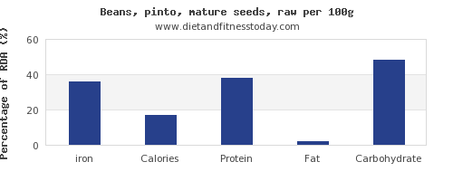 iron and nutrition facts in pinto beans per 100g