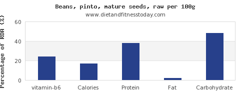 vitamin b6 and nutrition facts in pinto beans per 100g
