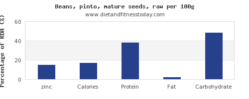zinc and nutrition facts in pinto beans per 100g