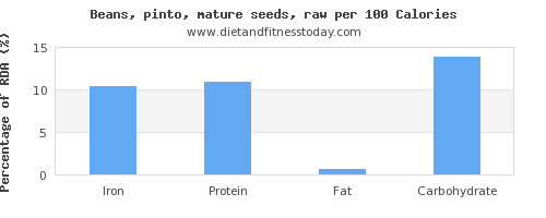 iron and nutrition facts in pinto beans per 100 calories