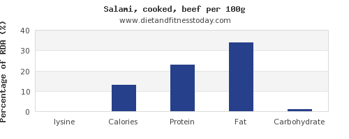 lysine and nutrition facts in salami per 100g
