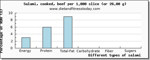 Salami Nutritional Value per 100g