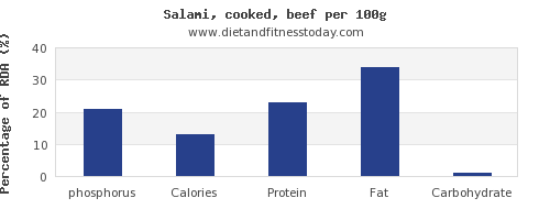 phosphorus and nutrition facts in salami per 100g