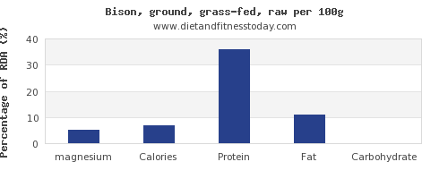 magnesium and nutrition facts in bison per 100g