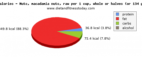 vitamin a, calories and nutritional content in macadamia nuts