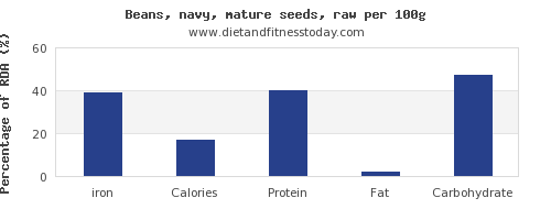 iron and nutrition facts in navy beans per 100g