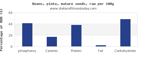 phosphorus and nutrition facts in pinto beans per 100g