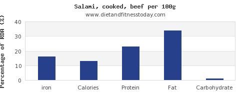 iron and nutrition facts in salami per 100g