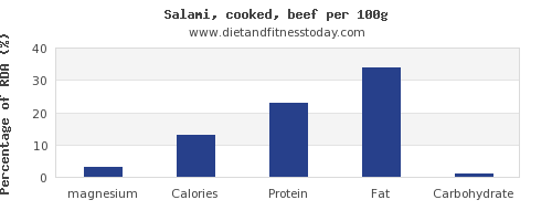 magnesium and nutrition facts in salami per 100g