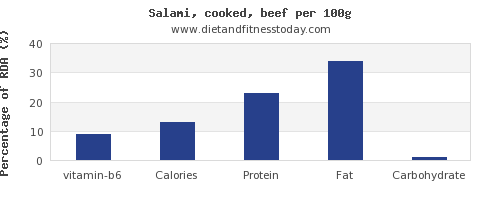 vitamin b6 and nutrition facts in salami per 100g